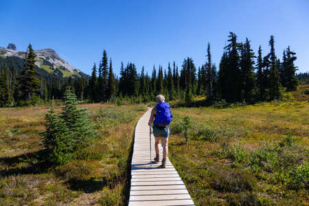 Girl hiking on a trail in nature during a vibrant sunny summer day. Taken in Garibaldi Provincial Park, located near Whister and Squamish, North of Vancouver, BC, Canada.