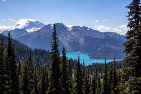 Beautiful landscape view during a vibrant sunny summer day. Taken in Garibaldi Provincial Park, located near Whister and Squamish, North of Vancouver, BC, Canada. Stock Photo