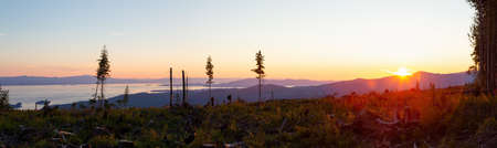 Panoramic Landscape view of the Cut Down Forest on top of the mountain during a vibrant summer sunset. Taken in Sechelt, Sunshine Coast, BC, Canada.