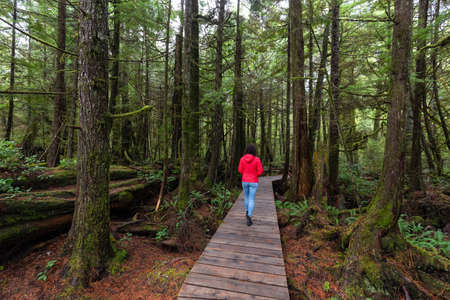Woman wearing a red coat walking on a wooden path in a wild forest. Taken in Rainforest Trail, near Tofino and Ucluelet, Vancouver Island, BC, Canada.