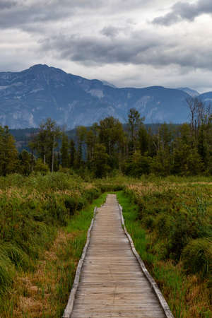 Wooden walking path on One Mile Lake with green vibrant plants and leafs. Picture taken in Pemberton, British Columbia (BC), Canada, on a cloudy summer day.