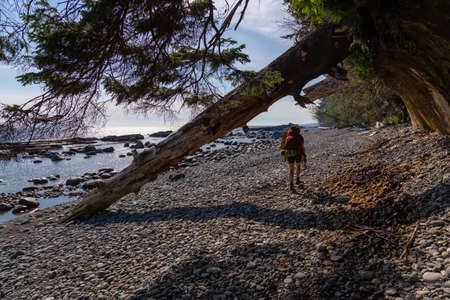Adventurous girl hiking Juan de Fuca Trail to Chin Beach on the Pacific Ocean Coast during a sunny summer day. Taken near Port Renfrew, Vancouver Island, BC, Canada. Foto de archivo