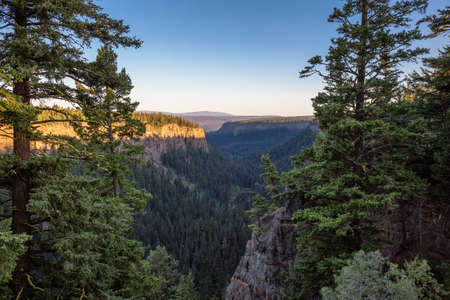 Beautiful View of Canadian Nature Landscape during a sunny summer sunset. Taken in Chasm, British Columbia, Canada. Nature Background Banque d'images