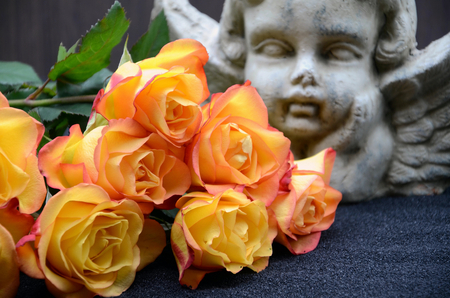 Yellow orange rose in front behind an angel