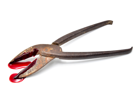 carnage: cutter tongue with blood on a white background close up