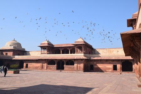 uttar pradesh: Old building and flying birds inside the archaeological site Fatehpur Sikri, Uttar Pradesh, India
