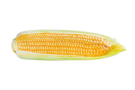 One corn ear isolated on white background Stock Photo