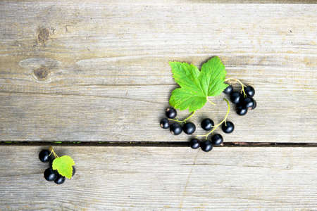 Black currant berries on old ristic wooden background