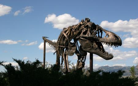 Dinosaur Museum of the Rockies Montana USA Editorial