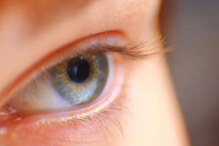 hypnotise: beautiful hazel eye