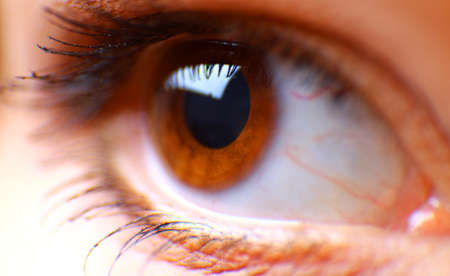beautiful hazel eye photo