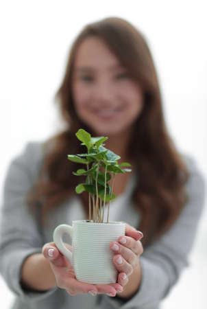 close up.a womans business shows you a sapling