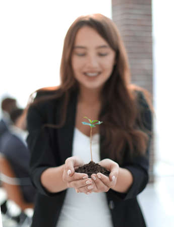 close up. business woman holding a fresh sprout Stock Photo