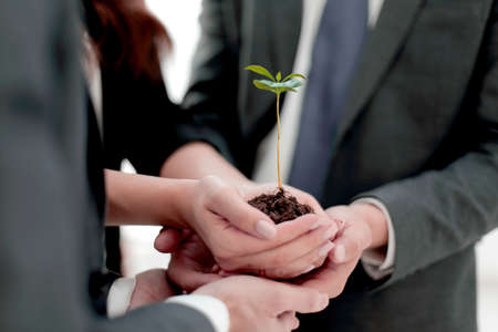 close up.Male and female business partners nurturing a new plant Stock Photo - 115337273