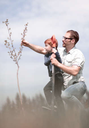 little son helps his father to plant a tree