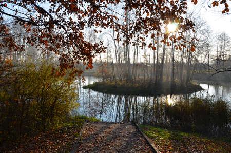 Autumn magic photo