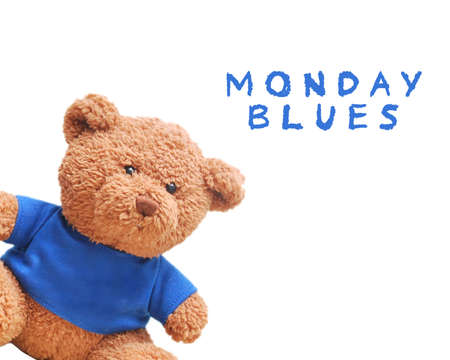 Brown teddy bear wear blue shirt isolated with white background. Typo word