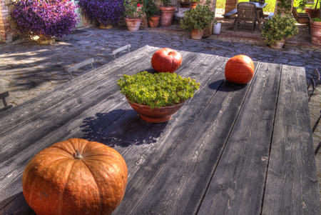 A vintage table in a country estate in Tuscany, Italy with some pumpkins in a typical autumn composition.