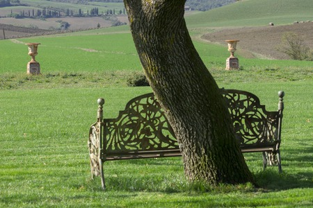 A vintage iron country bench next to a tree trunk with two columns on the background