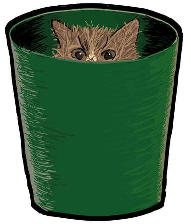 to reassure: Cat in a bin Illustration