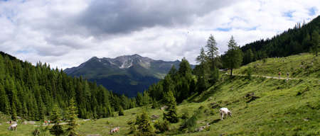 Hiking in the Texel Group in South Tyrol photo