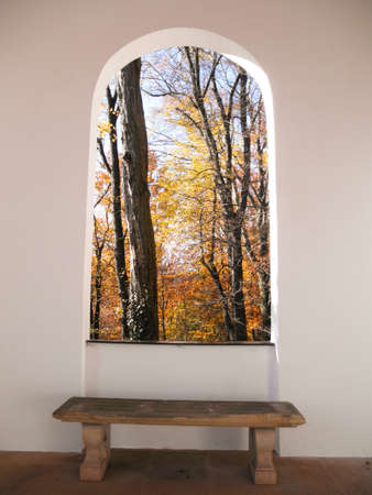 Look through a window in the colorful autumn forest photo
