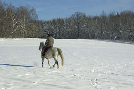 A horseback ride in winter Stock Photo - 8770896