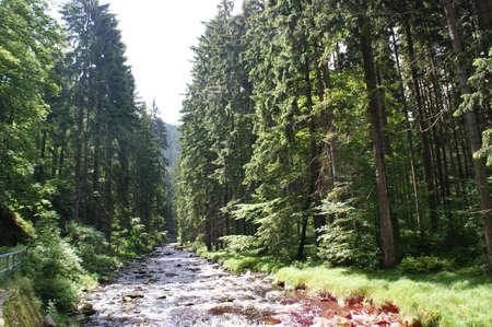 erzgebirge: In  Schwarzwasser Valley in Erzgebirge Stock Photo