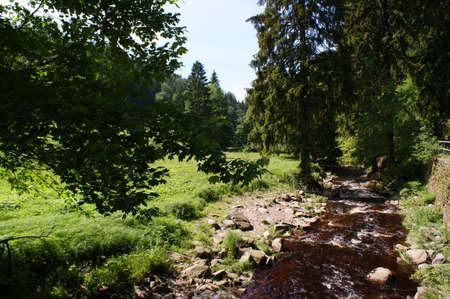 erzgebirge: In the Valley of the Schwaren Pockau, Germany