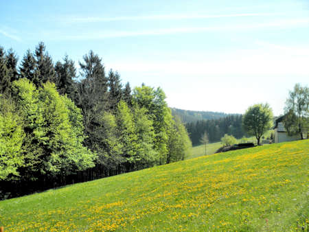 Idyllic landscape in the Erzgebirge in Germany. Rolling hills, spring, woods and meadows photo