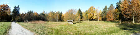 biotope: Panorama forest in fall; colorful autumn forest at the edge of a biotope, sunny day in october with blue sky, panorama picture