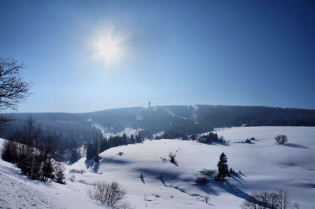 erzgebirge: Winter sun in the Erzgebirge; against the sun; the Keilberg is the highest mountain of the Erzgebirge; located in the Czech Republic