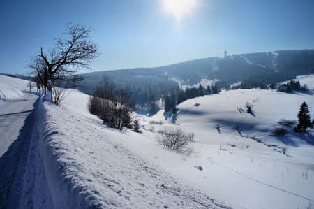 The Keilberg in the Czech Republic; back light picture; light and shadow; view to the Keilberg  Klinovec ; he is the highest summit of the Erzgebirge Stock Photo - 14013799