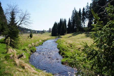 saxony: Hike through the idyllic Schwarzwassertal in the Erzgebirge in Saxony; sunny day in spring