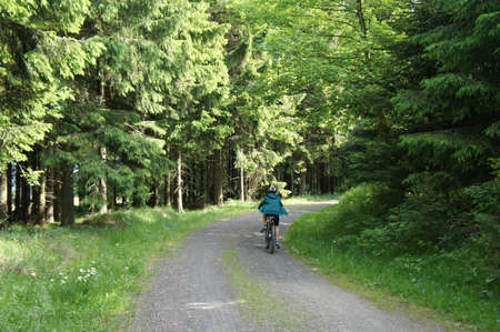 A boy rides his bike on a forest trail, sunny day in the spring Stock Photo - 17335451