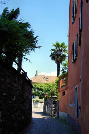 the flair: A narrow alley with southern flair in Ascona in the Canton of Ticino, Switzerland, Mediterranean plants