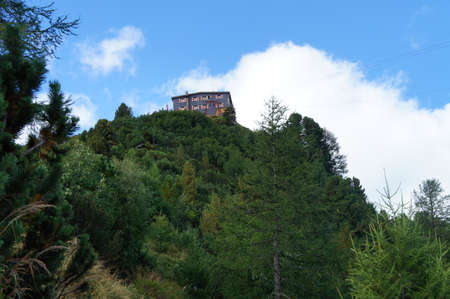 blue mountains tree frog: Mountain house in the Stubai Alps, view from the frog perspective; wooded mountain, blue sky with white clouds