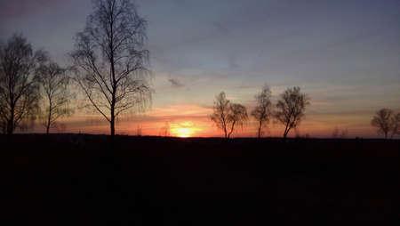 erzgebirge: Evening mood over the Erzgebirge in Germany trees before evening sky