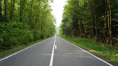 erzgebirge: Long, straight road through a forest in the Ore Mountains in Saxony, Germany, two-lane asphalt road with marking Stock Photo