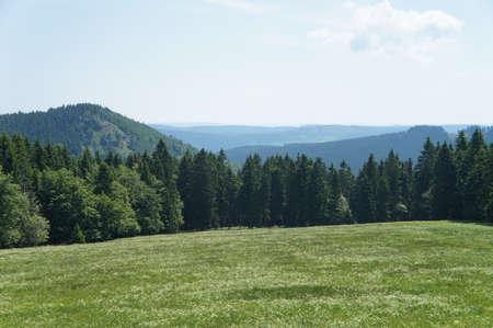 ber: Blick vom Rennsteig �ber die H�hen des Th�ringer Waldes, im Vordergrund eine bl�hende Wiese Views from the Rennsteig above the heights of the Thuringian Forest, in the foreground a blossoming meadow Stock Photo