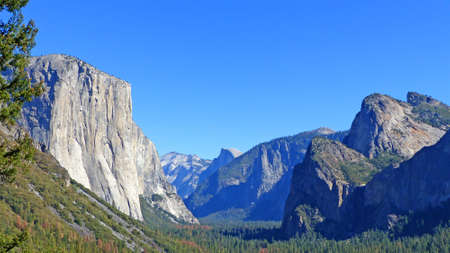 national forests: The distinctive rock El Capitan in Yosemite National Park in California, granite boulders, large forests and blue sky