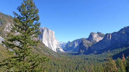 granite park: The distinctive rock El Capitan in Yosemite National Park in California, granite boulders, large forests and blue sky