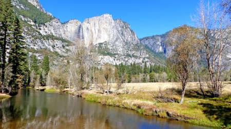 ponderosa pine: The Merced River in Yosemite Valley in Yosemite National Park in California, striking rocks of the Sierra Nevada with Yosemite Falls, landscape in autumn, blue sky,