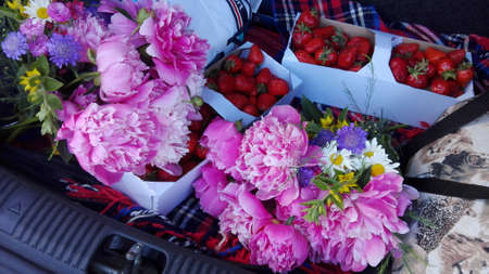 Colorful bouquets and strawberries in car boot, harvest from the garden, Stock Photo