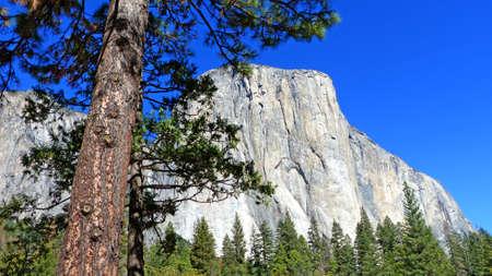 sierra nevada: The distinctive rock El Capitan in Yosemite National Park in California, blue sky