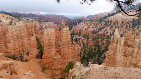 View of the bizarre rock columns in Bryce Canyon National Park in Utah, United States Single spruces grow on the reddish erosional rock. Dark clouds are over the landscape after a thunderstorm.