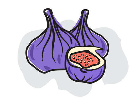 purple fig: figs in doodle style Illustration