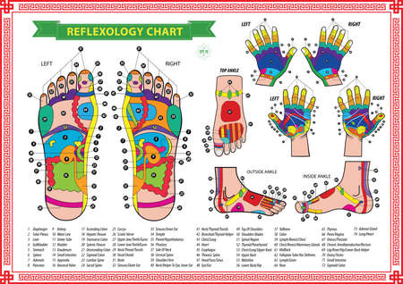 feet care: reflexology chart