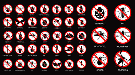 set of various insect prohibited in silhouette, with insect name. easy to modify