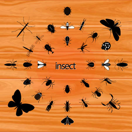 set of various insect in silhouette at wooden background, in circle style. easy to modify